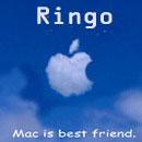 Ringo_3