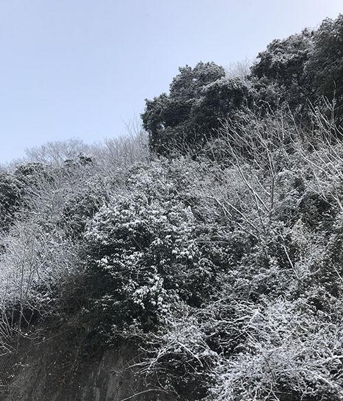 写真、裏山の雪景色と青い空