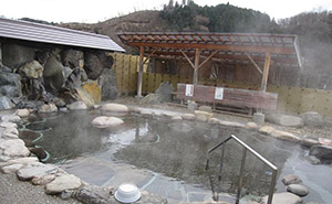 写真、下湯原温泉ひまわり館
